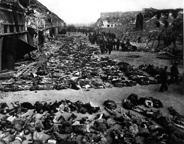 Rows of bodies of dead inmates fill the yard of Lager Nordhausen, a Gestapo concentration camp. This photo shows less than half of the bodies of the several hundred inmates who died of starvation or were shot by Gestapo men. Germany, April 12, 1945. Myers. (Army) NARA FILE #: 111-SC-203456 WAR & CONFLICT BOOK #: 1121